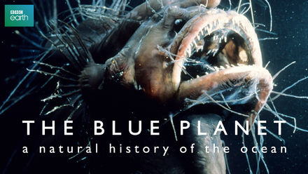 Blue Planet: Natural History of the Oceans